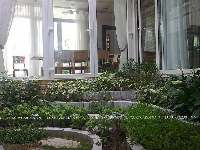 Bố trí vườn trong giữa biệt thự