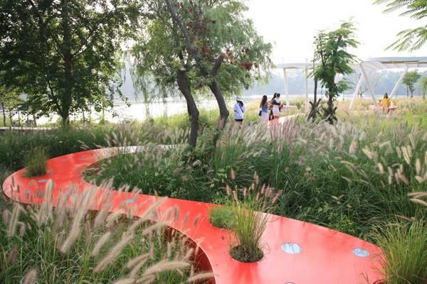 Cải tạo không gian cảnh quan cho công viên Red Ribbon