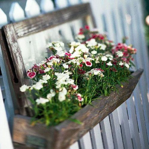 Hình ảnh bố trí hoa cho ban công