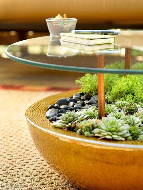 dưới bàn uống nước cũng có thể trồng cây