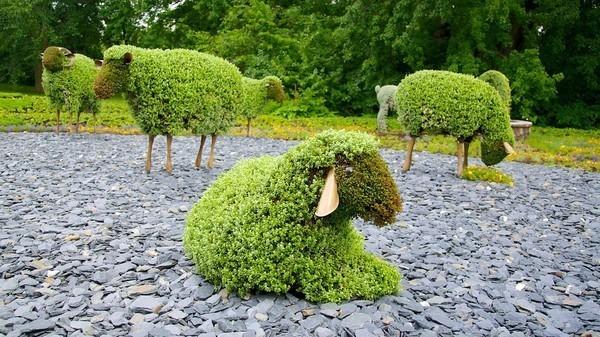 Tạo dáng con vật vui nhộn trong vườn