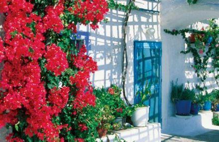 Trang trí sân vườn theo phong cách mới