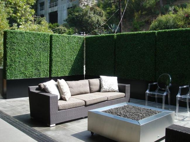 hàng rào trong các khu vườn được cắt gọn gàng và lịch lãm
