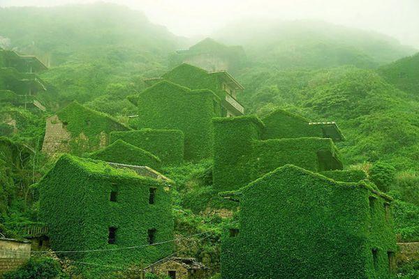ngôi làng xanh vì bỏ hoang