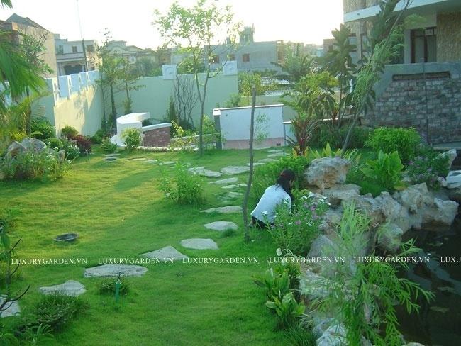 Sân vườn biệt thự mang phong cách tropical