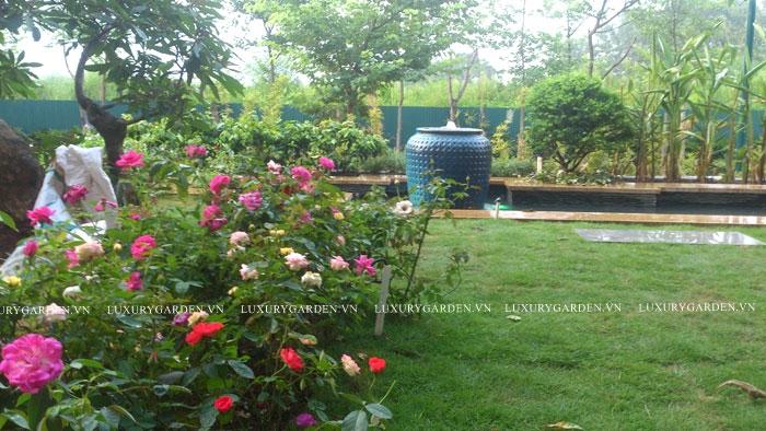 thi công sân vườn cho biệt thự ciputra