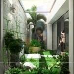 Cảnh quan nhà vườn vi trí thông tầng