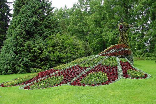 Vườn châu Âu không kén chọn diên tích