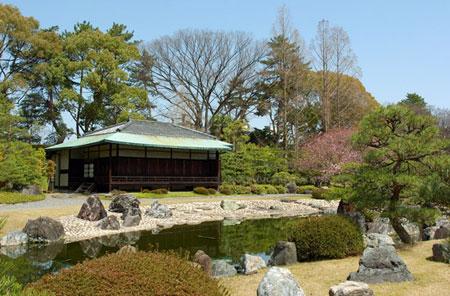 Vườn trà Chaniwa