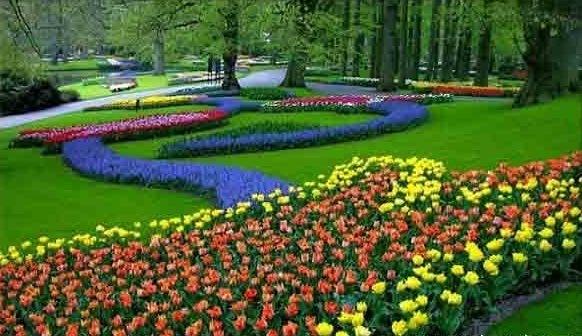 vườn phong cách châu Âu