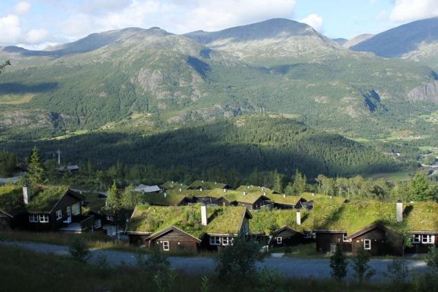 Tất cả căn nhà trong ngôi làng đều có mái ở Na Uy